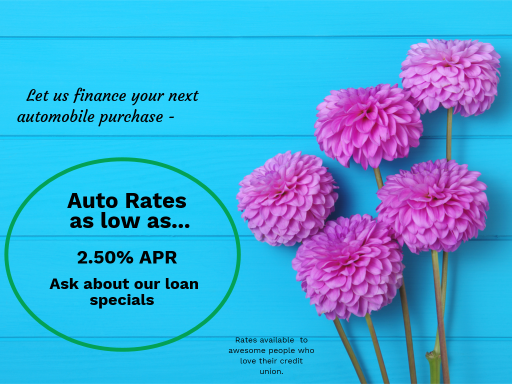 Let us finance your next automobile purchase-